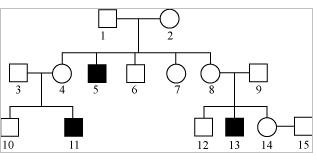 Pedigree Charts Genotype Example http://blog.meritnation.com/2012/03/page/2/